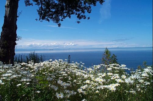 Colette's Bed & Breakfast - Port Angeles